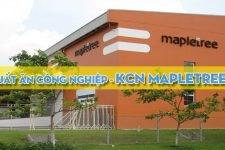 Cung cấp suất ăn công nghiệp ở KCN MapleTree