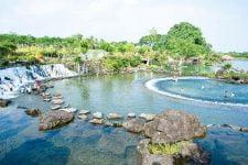 Suối mơ Bình Dương - Đồng Nai