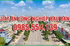 Suất ăn công nghiệp uy tín ở Bàu Bàng